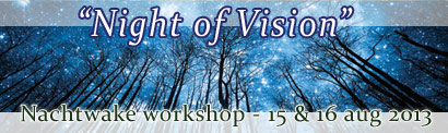 Banner - Night of Vision