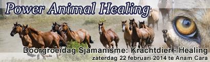 Power animal healing