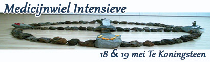 Medicijnwiel Intensive