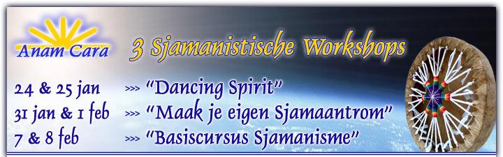 3 sjamanistische workshops